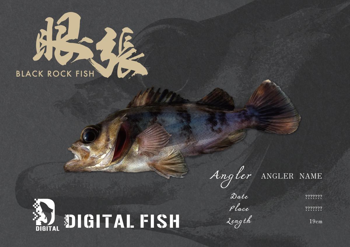 メバルデジタル魚拓