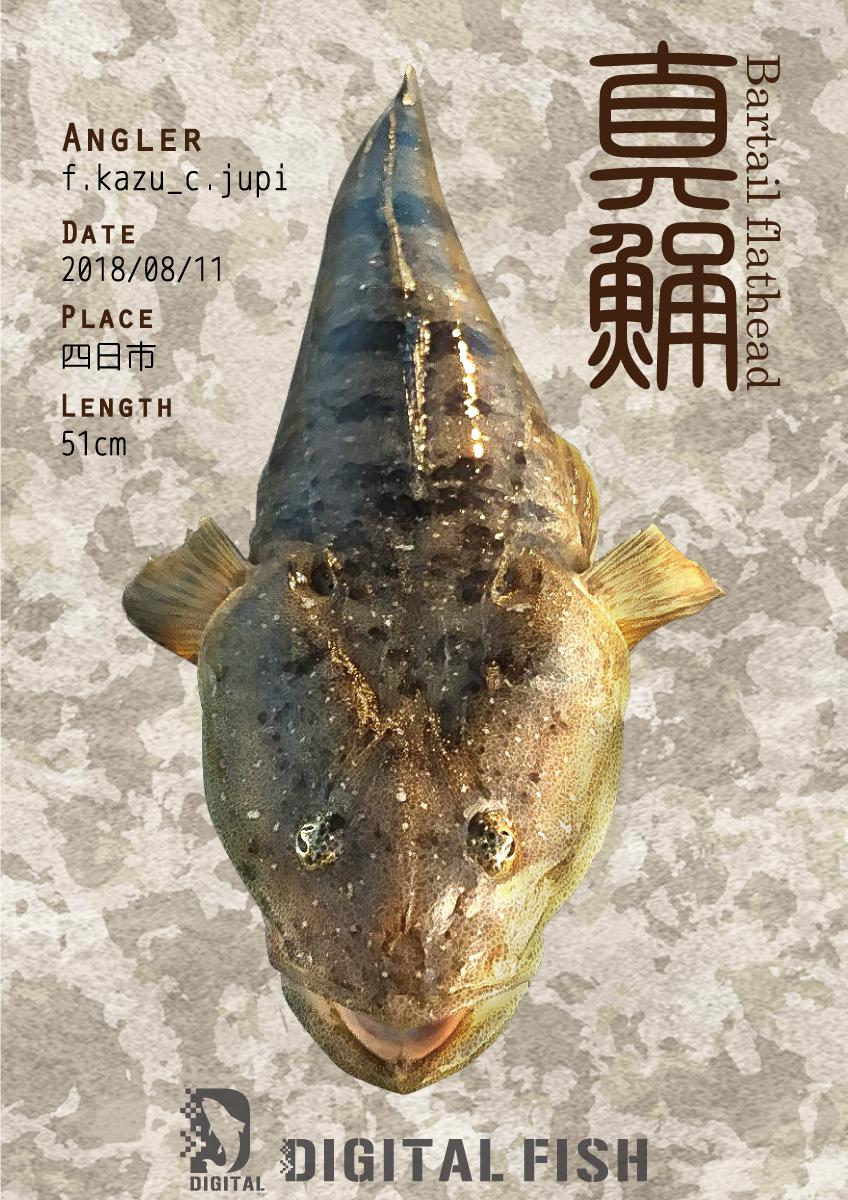 マゴチ デジタル魚拓