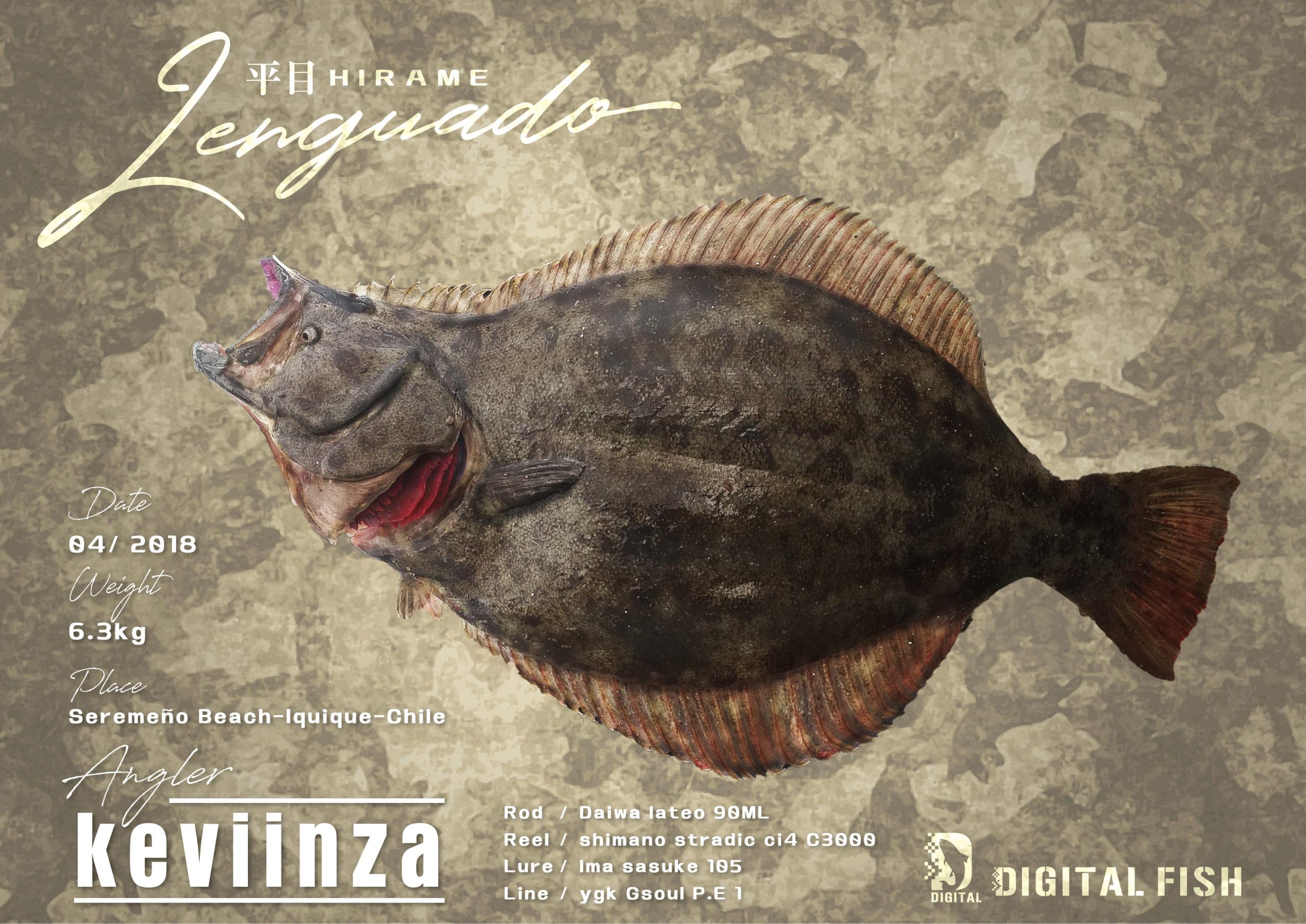 平目のデジタル魚拓