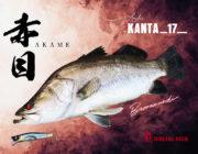 神秘の魚のデジタル魚拓