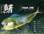色鮮やかなこの魚